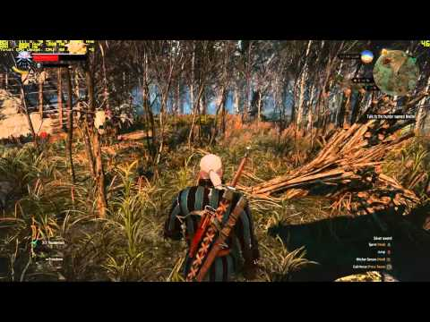 The Witcher 3 on the gtx 970 and fx 8320