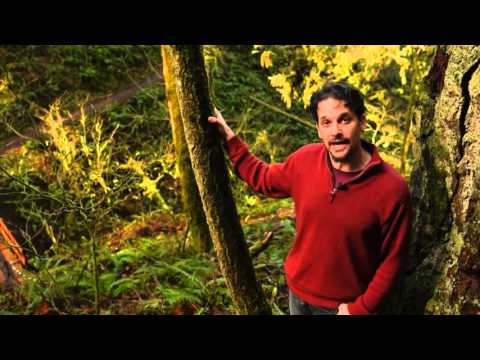 Intro to Permaculture Course Overview