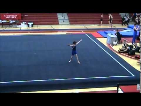 Mens gymnastics level 7