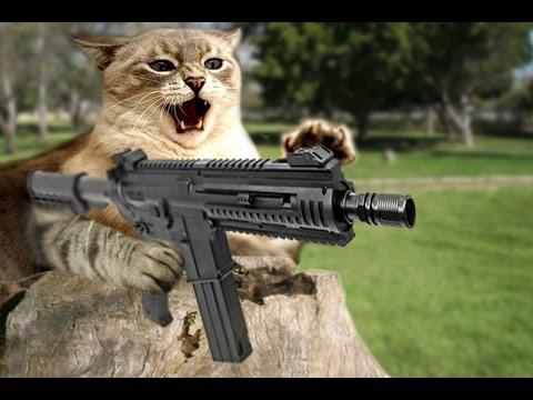 gato loco disparando a perros en parque parodia