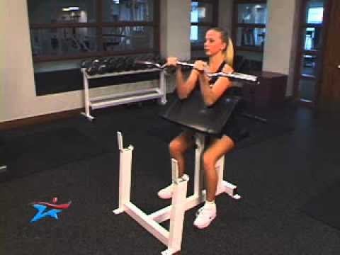 Biceps Preacher Curl Young Adult Female