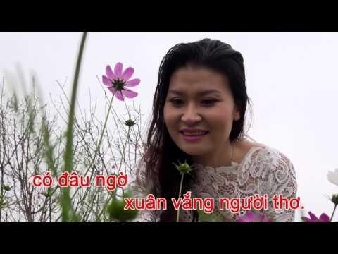 Karaoke Viet - 61248 Đón xuân này tôi nhớ xuân xưa (Official)