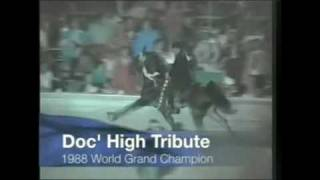 Tennessee Walking Horse World Grand Champions (70's-early