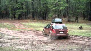 Ford freestyle in the mud alexituu