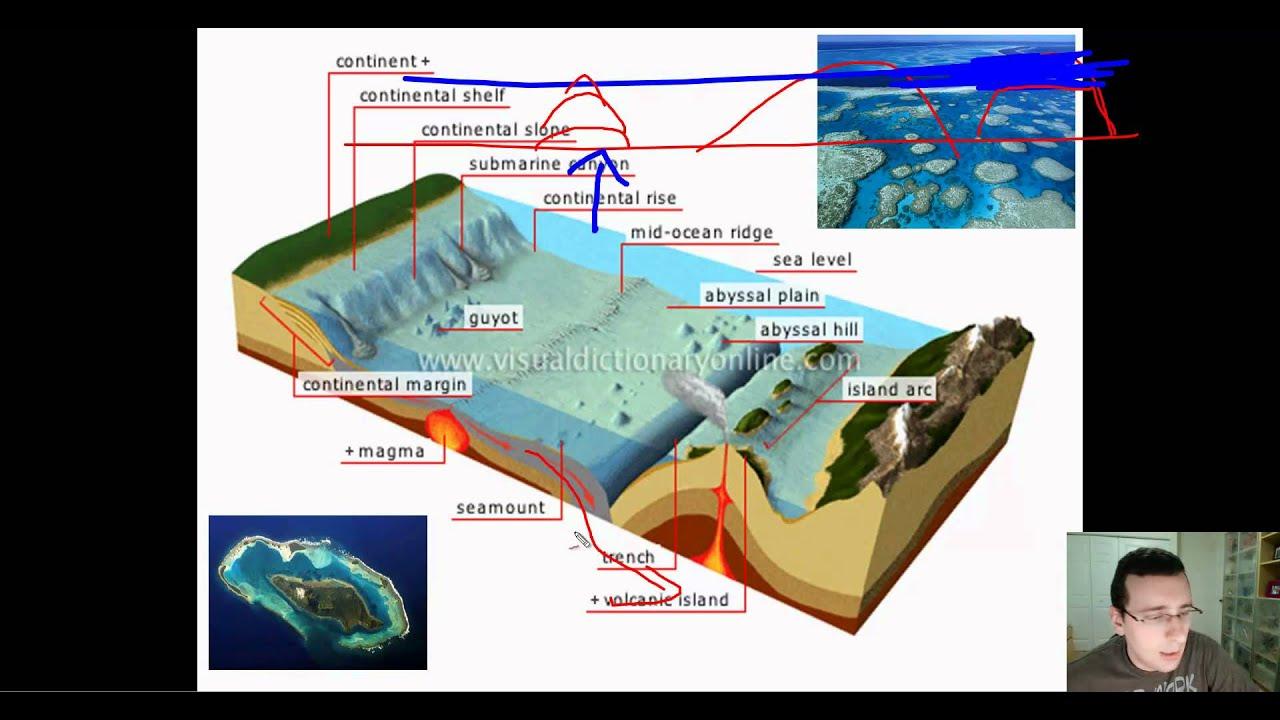 Ocean Basins (Part 2): Features of the Ocean Floor (Deep ...