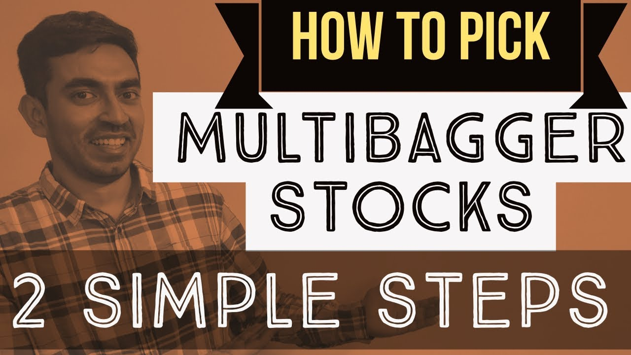 Multibagger Stocks - 2 Simple Steps to find Multibaggers | Hindi