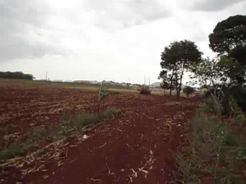 Plantando  mandioca com a plantadeira