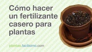 Cómo hacer un fertilizante casero para plantas
