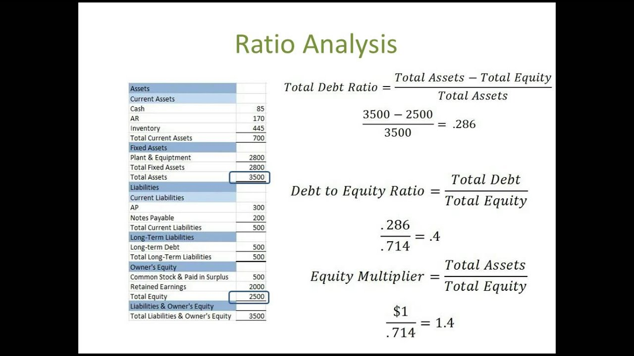 financial statement analysis term paper