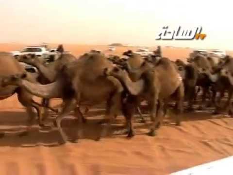 مسيرة منقية / علي بن محمد العجواني السبيعي   (رحمه الله)