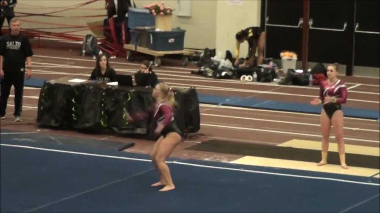 wisconsin gymnastics state meet 2014