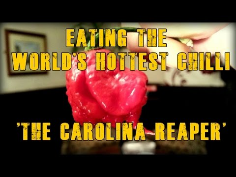 CAROLINA REAPER HP22B Chili Pepper Pod Review