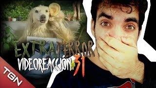 """""""Extra Terror Video-reacción 31#"""" - PERROS JAPONESES RAROS"""