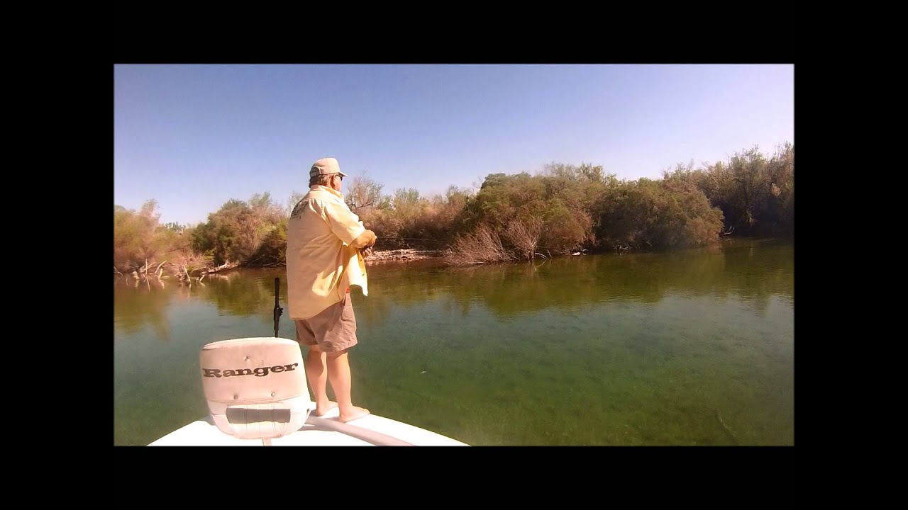 Lake mohave 040413 youtube for Lake mohave fishing
