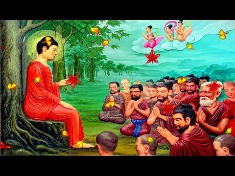 Lời Phật dạy về NHÂN QUẢ THIỆN ÁC BA ĐỜI... bạn là người có duyên rất lớn với Đức Phật khi nghe
