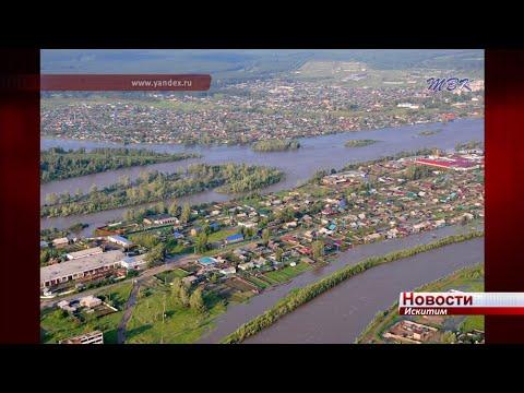 Искитимские волонтеры вернулись из Иркутской области