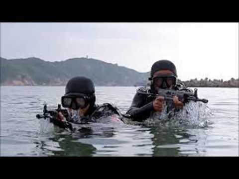 TQ nói sao về đặc công nước của Việt Nam?
