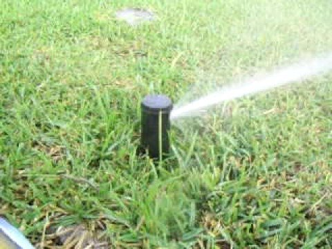 Sistema de riego por aspersion http ricardomogollon - Tubo riego por goteo ...