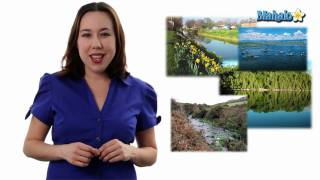 Learn Biology: Biomes And Communities Definition