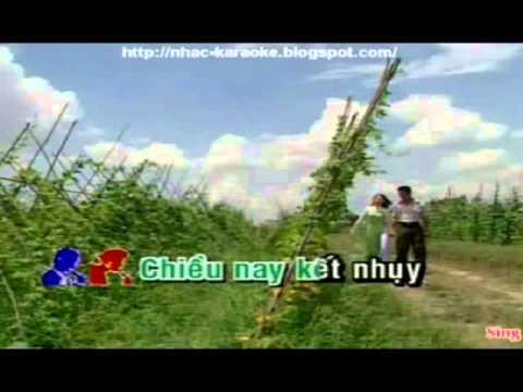Karaoke Hai Hoa Rung Cho Em Hat Voi LNY