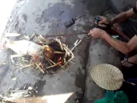 Tat nien doi Bong Chuyen TTTDTT Q12 2012. Giet luon con Cho