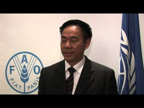 Interview with Mr. Qu Sixi on 40th Anniversary of the Collaboration between FAO and China