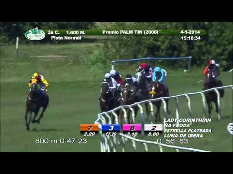 Vidéo de la course PMU PREMIO PALM TIN