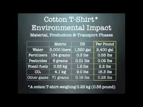 The Environmental Impact of Textiles