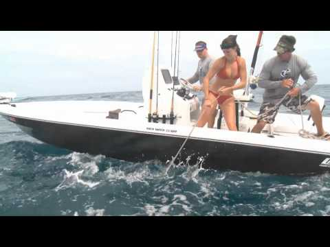 Goliath Grouper Frenzy. Man goes overboard!