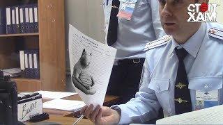 СтопХам - По встречке в полицию 🚓🚑 Стопхам за пределами канала на ютубе