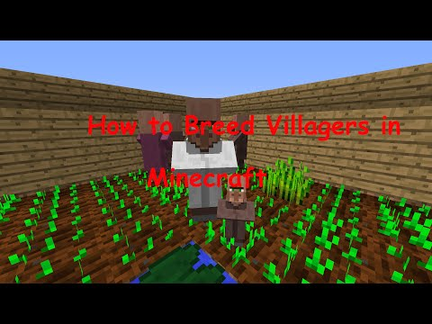 How to Breed Villagers in Minecraft 1.8.1 (HD)