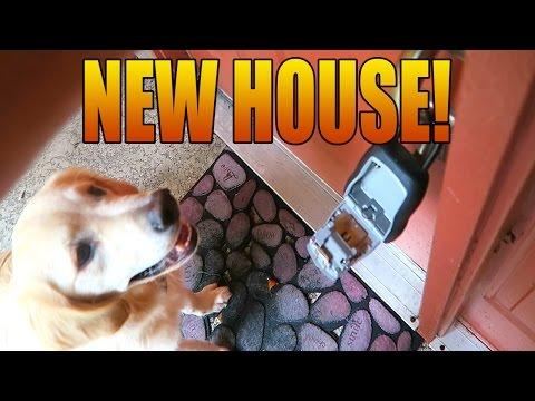 Super Cooper Sunday #23 - COOPER'S NEW HOUSE!