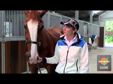 Kate Taylor-Wheat - GRAND PRIX DRESSAGE RIDER and Rose-Hip Vital Equine