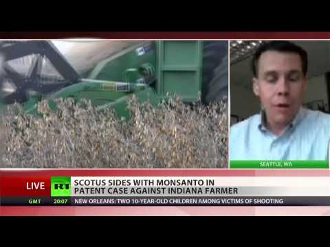 Monsanto taking over America\'s agriculture: New victory in Supreme Court