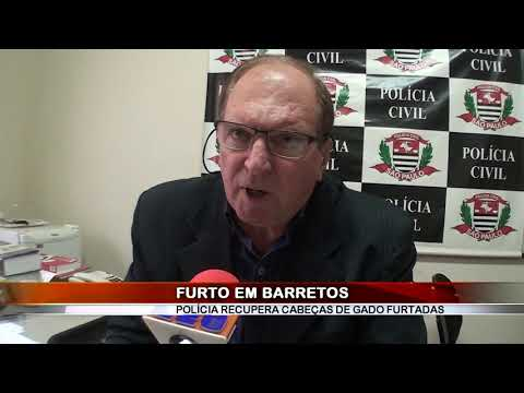 23/10/2019 - Polícia Civil recupera cabeças de gado furtado em Barretos, e vítima acaba caluniada