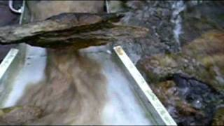 Gold Prospecting Sluicing In Northern California