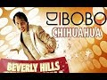 Karaoke song Chihuahua - DJ Bobo, Published: 2007-01-05 13:09:17