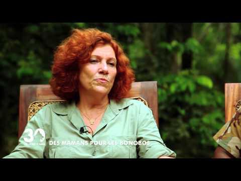 Lola Ya Bonobo - Le paradis des bonobos