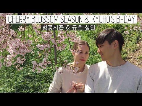 CHERRY BLOSSOM Season in Seoul & Kyuho's B-Day (자막)국제커플의 벚꽃 나들이 & 생일