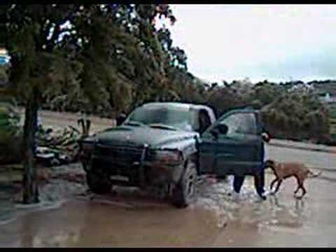 San Antonio 2007 Ice Storm