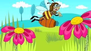Tajemnicza Kuchnia - Pszczoły
