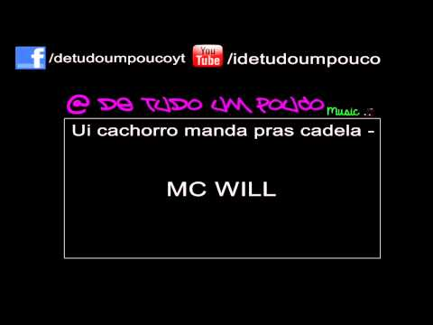 Ui cachoro manda pras cadela - MC WILL