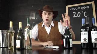 La Temperatura perfecta de un Vino