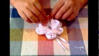 Cooking | tutorial rosa di ras | tutorial rosa di ras