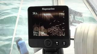 Видео обзор Raymarine Dragonfly-6 Gen1 с транцевым датчиком CPT-60