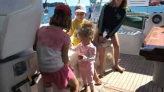 World Cruising Stray Kitty Catamaran Sailing.
