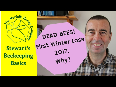 First Winter Loss 2017 - Honeybees Starved, Probably! #Beekeeping Basics - The Norfolk Honey Co.
