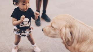 AJOUI'S FIRST DOG ENCOUNTER