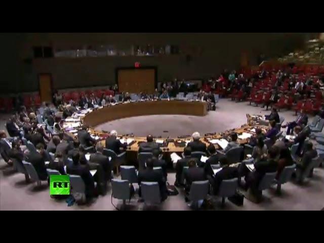 Совет Безопасности ООН обсуждает ситуацию на Украине – прямая трансляция