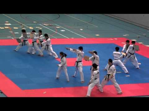Kukkiwon Korean Worldfamous Taekwondo Demoteam in Netherlands 2011-4-6 (1/5)